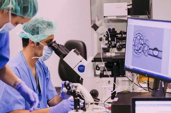 Embryology Training program